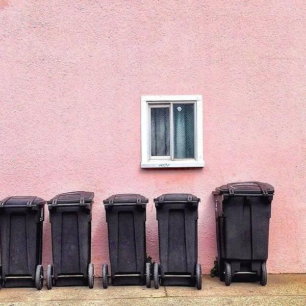 Wall Art - Photograph - Garbage Bin Family by Julie Gebhardt