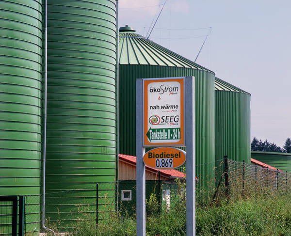 Wall Art - Photograph - Biodiesel Storage Tanks by Martin Bond/science Photo Library