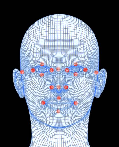 Wireframe Photograph - Biometric Facial Map by Alfred Pasieka