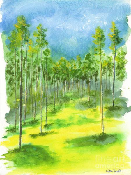 Birch Glen Art Print