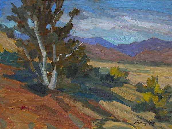 Walkers Painting - Birch Tree At Walker Valley by Diane McClary