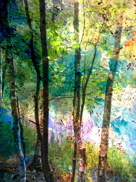 Digital Art - Birch Trees Lake Tall And Abstract Painting by Anita Burgermeister