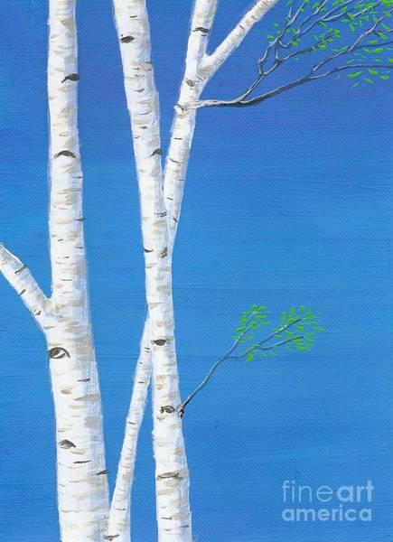 Painting - Birch Trees by Mary Scott