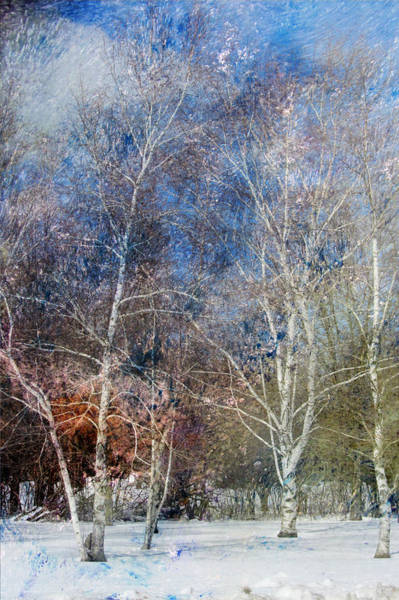 Digital Art - Birches Winter And Abstract Painting 3 by Anita Burgermeister