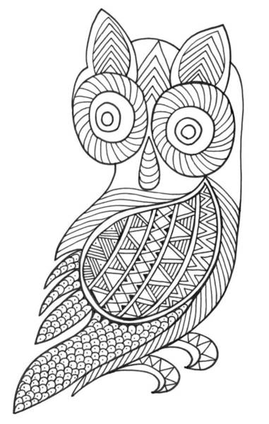 Wall Art - Drawing - Bird Baby Owl by MGL Meiklejohn Graphics Licensing