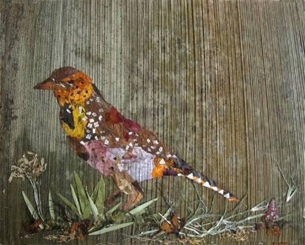 Eco Friendly Mixed Media - Bird Barbet by Basant Soni