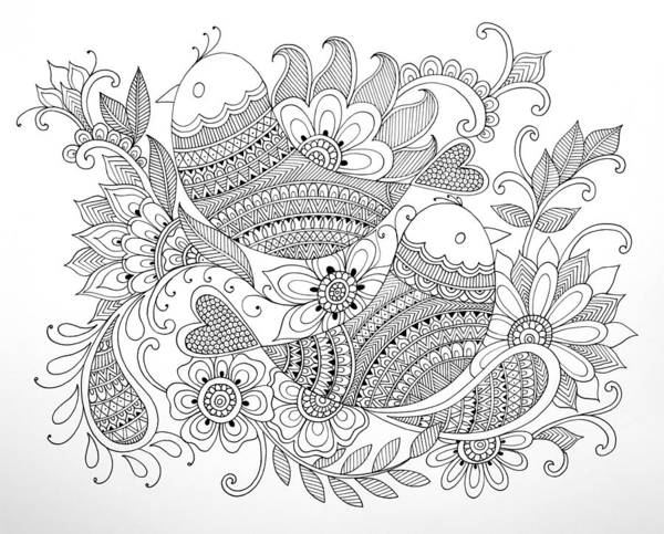 Wall Art - Drawing - Bird Birds by MGL Meiklejohn Graphics Licensing