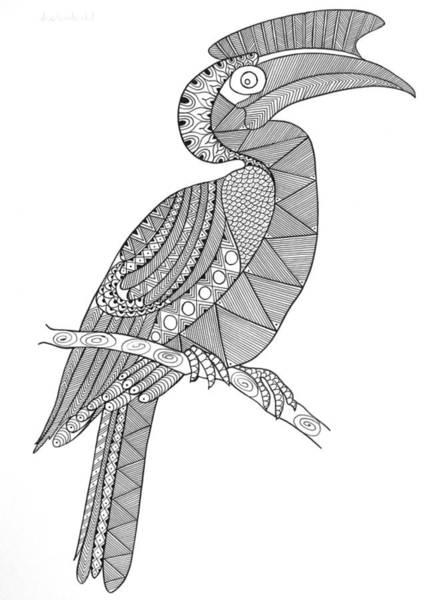 Hornbill Drawing - Bird Hornbill by MGL Meiklejohn Graphics Licensing