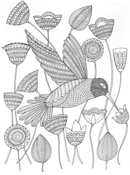 Intricate Drawing - Bird Hummingbird 2 by MGL Meiklejohn Graphics Licensing