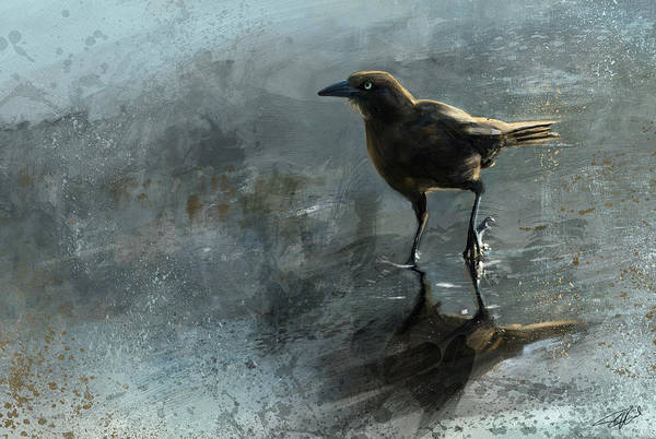 Bird In A Puddle Art Print