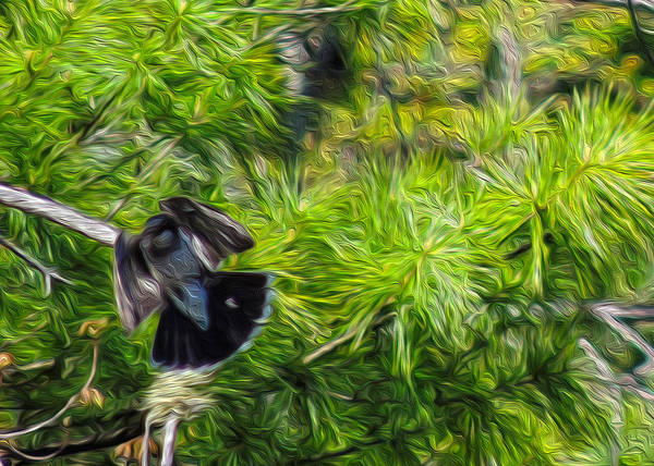 Pine Needles Painting - Bird In The Pines by Mim White