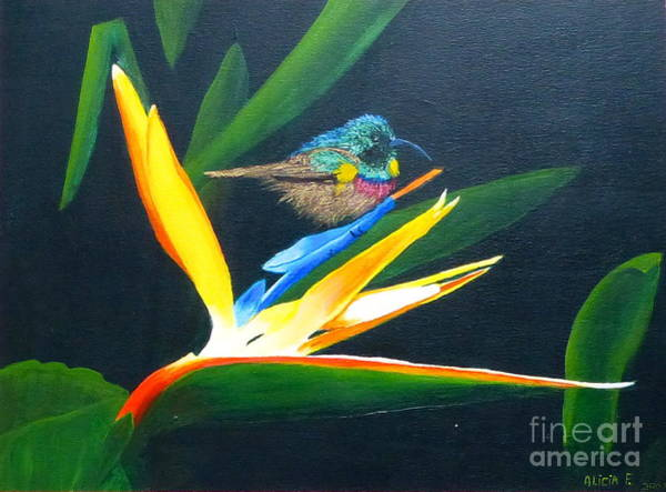 Painting - Bird Of Paradise by Alicia Fowler