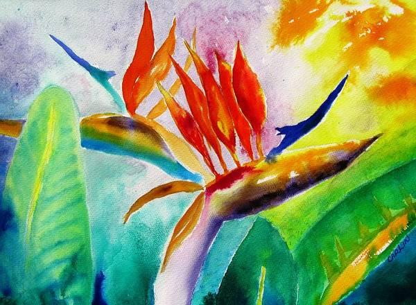 Bird Of Paradise Painting - Bird Of Paradise by Carlin Blahnik CarlinArtWatercolor