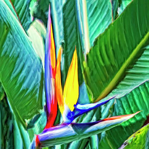 Kona Painting - Bird Of Paradise by Dominic Piperata