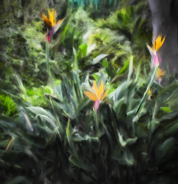 Painting - Bird Of Paradise II by Penny Lisowski