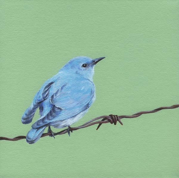 Wall Art - Painting - Bird On A Wire by Natasha Denger