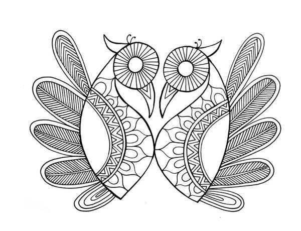 Intricate Drawing - Bird Parrots by MGL Meiklejohn Graphics Licensing