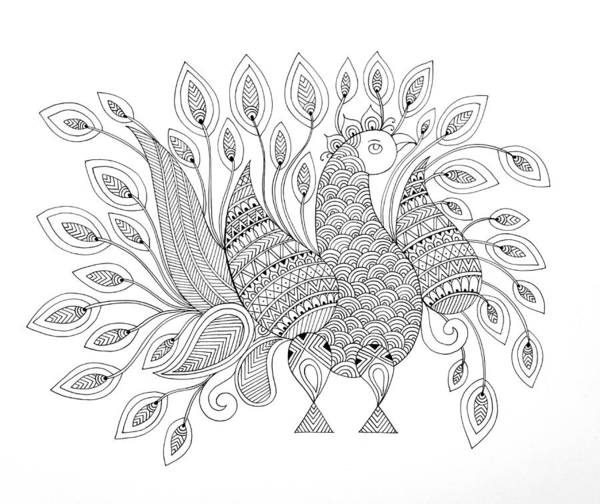 Wall Art - Drawing - Bird Peacock 7 by MGL Meiklejohn Graphics Licensing