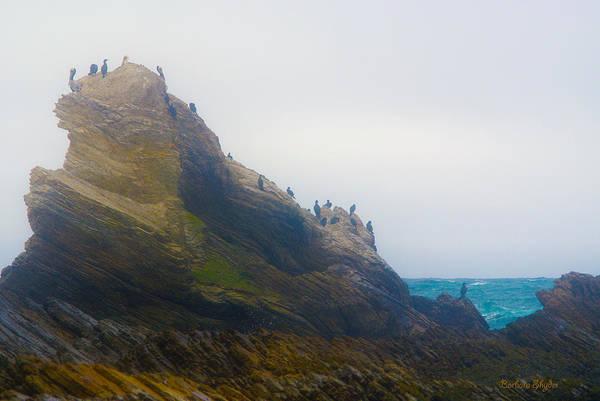 Montana De Oro State Park Photograph - Bird Rock In The Fog by Barbara Snyder