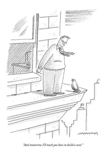 Bird Talking To Man Standing On The Ledge Art Print