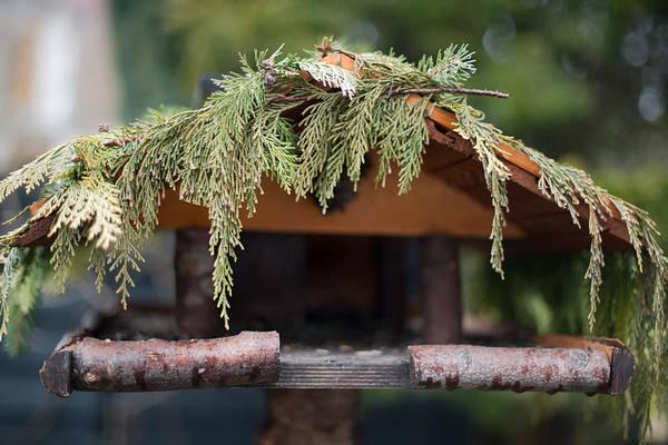 Empty Nest Wall Art - Photograph - Birdhouse At Home Garden by Frank Gaertner