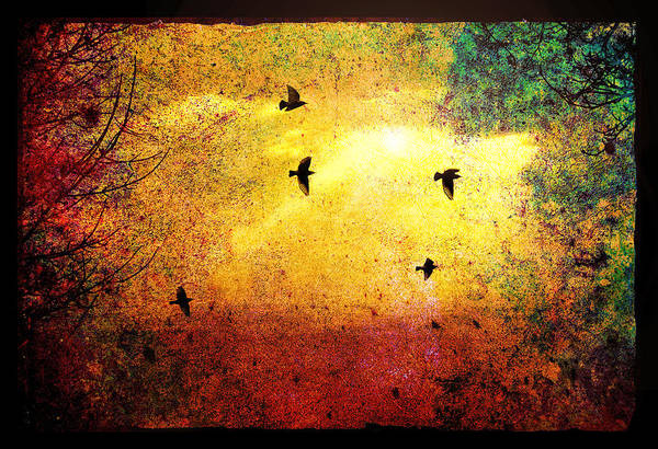 Digital Art - Birds At Sunset by Rick Wicker