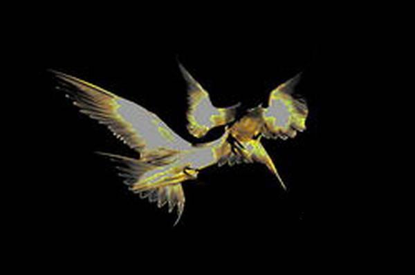 Digital Art - Birds Fighting by Mary Russell