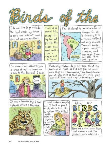 April 21st Drawing - Birds Of The Pantanal by Roz Chast