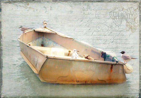 Photograph - Birds On A Boat In The Basin by Karen Lynch