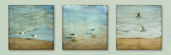 Digital Art - Birds Take Off Sequence by Eduardo Tavares
