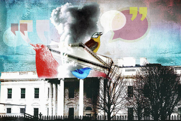 Tweets Photograph - Birds Tweeting From The White House by Ikon Images