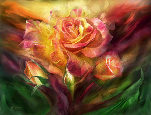 Mixed Media - Birth Of A Rose by Carol Cavalaris