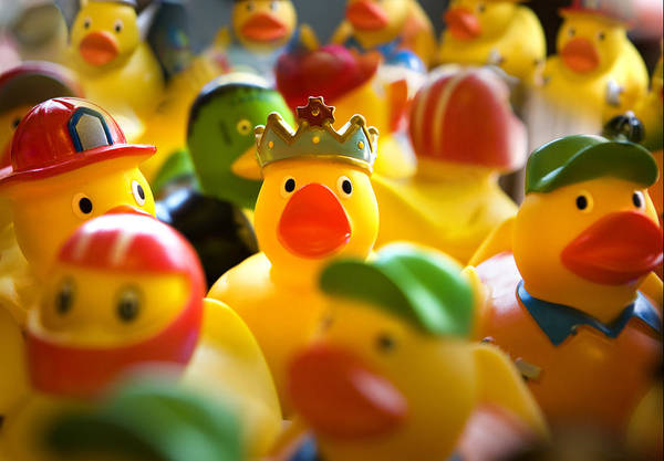 Rubber Ducky Photograph - Rubber Duckies by Marilyn Hunt