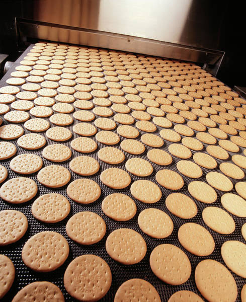 Manufacture Wall Art - Photograph - Biscuit Manufacture by Steve Allen/science Photo Library