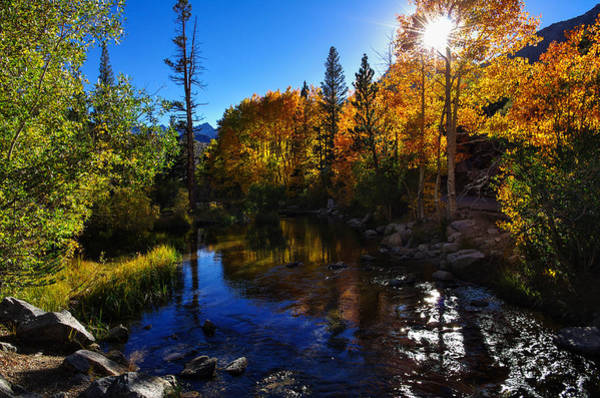 Bishop Photograph - Bishop Creek Fall Color Sunset by Scott McGuire
