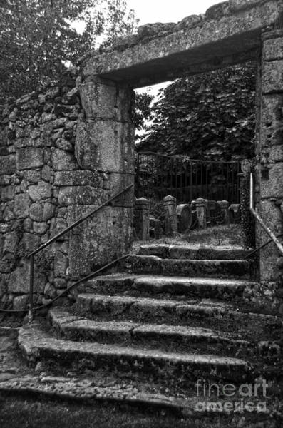 Photograph - Bishop's Palace Gardens Bw by RicardMN Photography