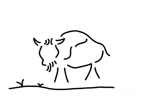 Lineart Drawing - bison buffalo America by Lineamentum
