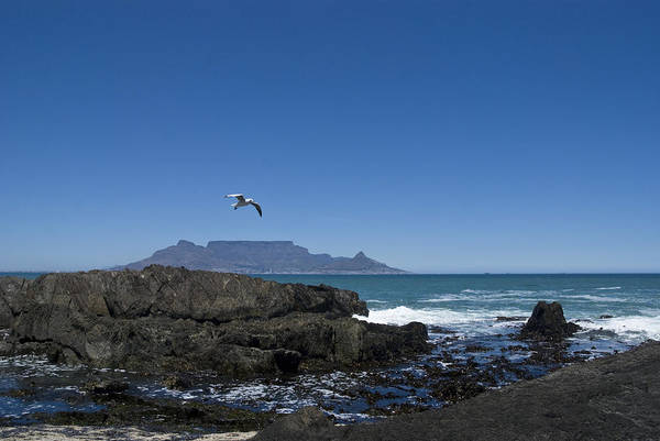 Wall Art - Photograph - Table Mountain Horizon by Sarah-jane Laubscher