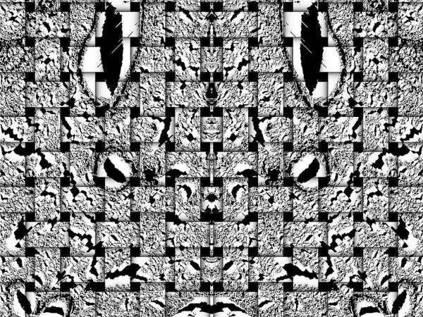 Digital Art - Abstract Black White Art No.39  by Drinka Mercep