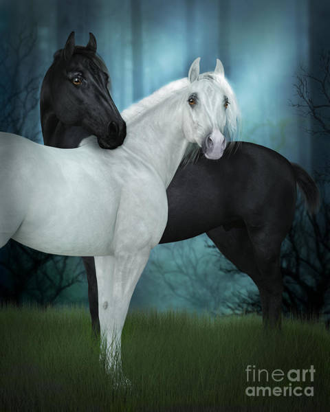 Digital Art - Black And White Horses by Elle Arden Walby