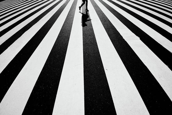 Zebra Pattern Photograph - Black And White by Kouji Tomihisa