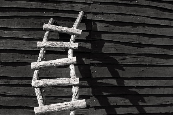 Don Johnson Photograph - Black And White Ladder by Don Johnson
