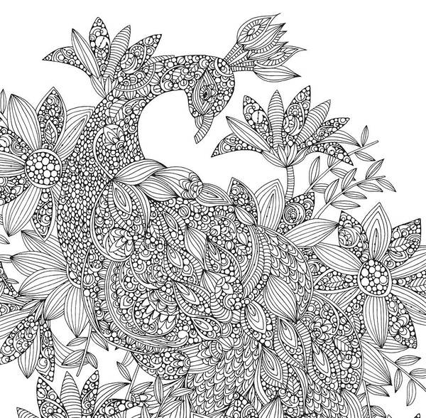 Graphics Drawing - Black And White Peacock by MGL Meiklejohn Graphics Licensing