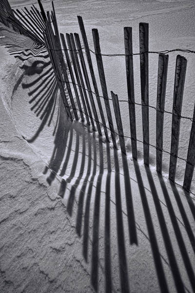 Photograph - Black And White Sand Fence During Winter On The Beach by Randall Nyhof