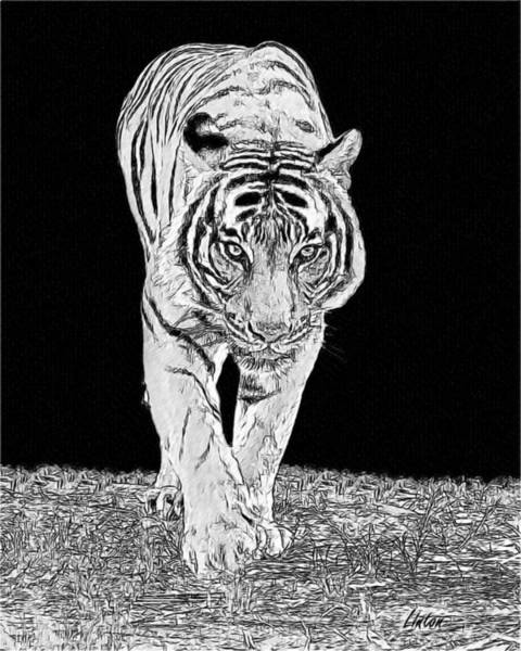 Digital Art - Black-and-white Tiger by Larry Linton