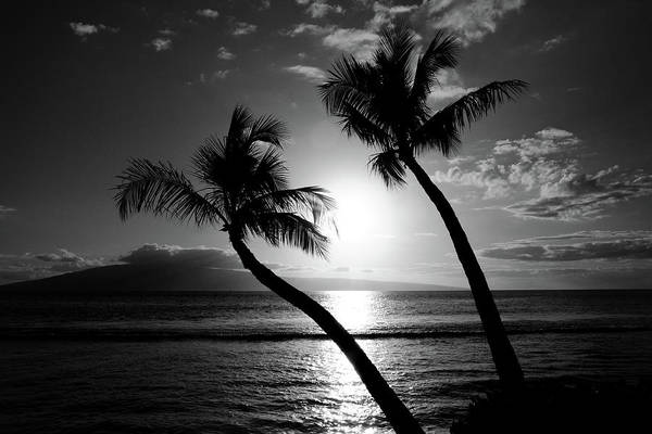 Maui Sunset Photograph - Black And White Tropical by Pierre Leclerc Photography