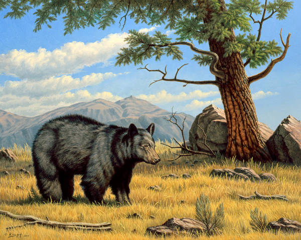 Wall Art - Painting - Black Bear Above Lamar by Paul Krapf