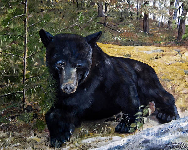 Painting - Black Bear - Scruffy - Signed By Artist by Jan Dappen