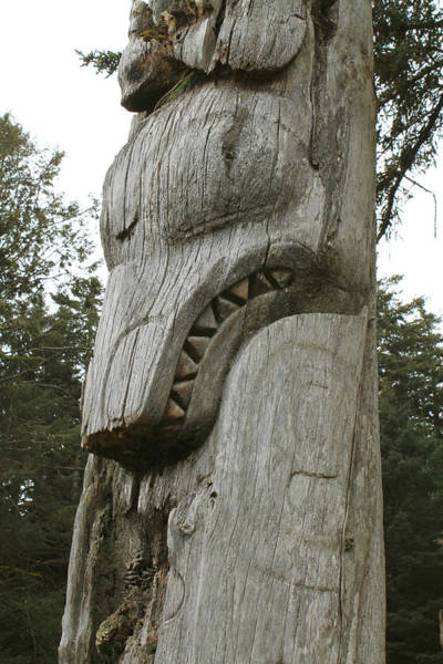 Queen Charlotte Islands Wall Art - Photograph - Black Bear Totem by Nancy Sefton