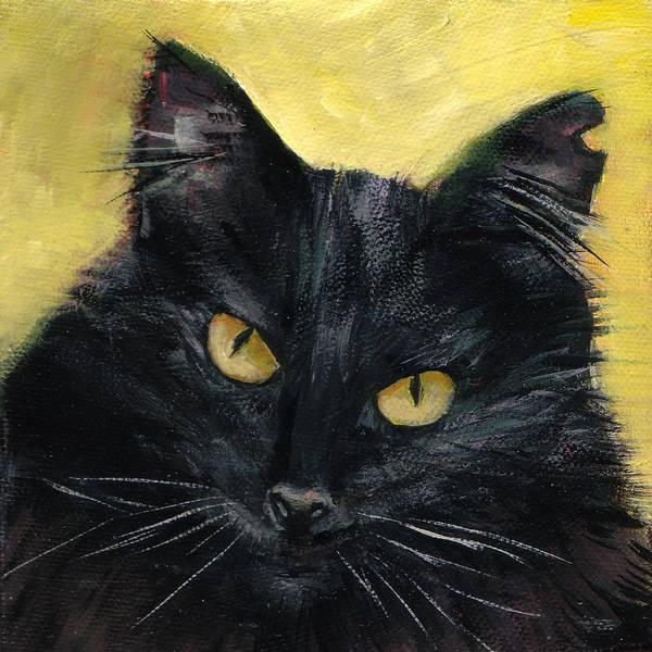 Cat Eyes Painting - Black Beauty by Mary Medrano